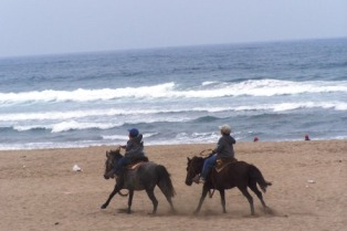 Pony Ridding Maitencillo Beach