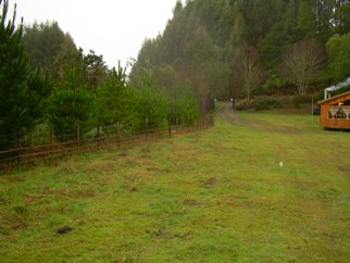 Property # 4, Las Quemas, Properties in Chile