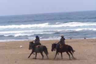 Ponys en Playa de Maitencillo, Informacion de Chile